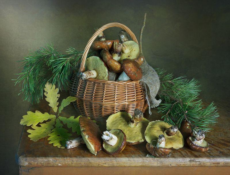 натюрморт,грибы,лесной,вера павлухина,маслята, Натюрморт с грибамиphoto preview