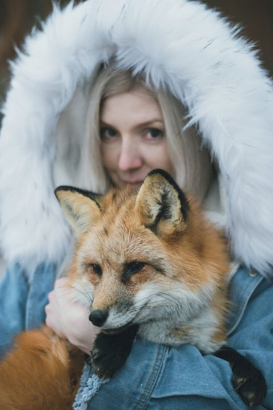 Fox storyphoto preview