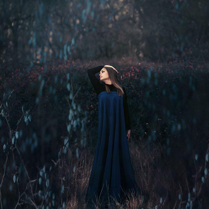 девушка, сны, осень, темный ключ, терновник, арт, синий, Сны. Танцующая в терновникеphoto preview