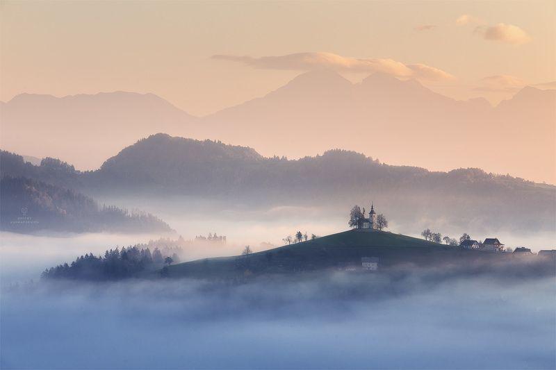 В утреннем туманеphoto preview