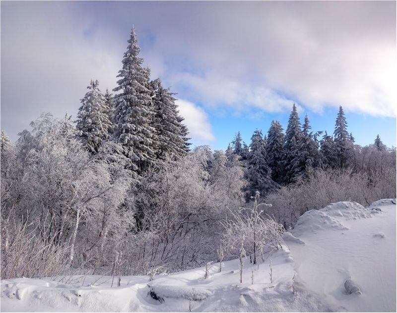 На перевале,Уреньга...photo preview