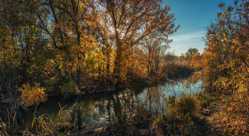 Октябрь. У ручья...photo preview