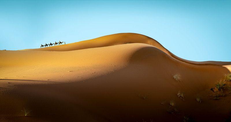Дюны. фото превью