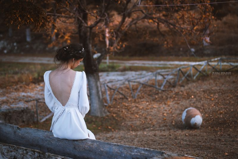 wedding, queen, wedding dress, dress, autumn, girl, My own Queenphoto preview