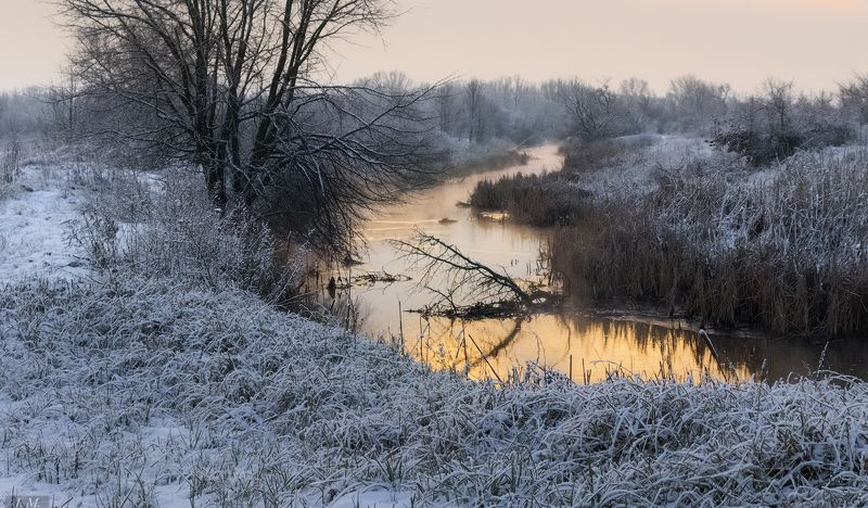 зима, пейзаж, речка, снег, утро, туман, золотистый, цвет, golden, colors, small, landscape, light, morning, nature, river, snow, winter, fog золото и сереброphoto preview