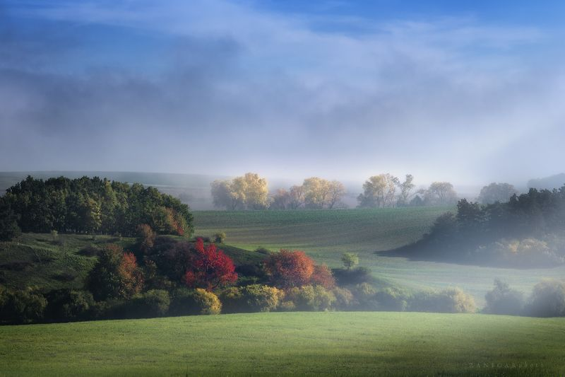 landscape,fog,fogy,zanfoar,nikon d750,haze,misty,czech republic,mood,moody colors of autumnphoto preview