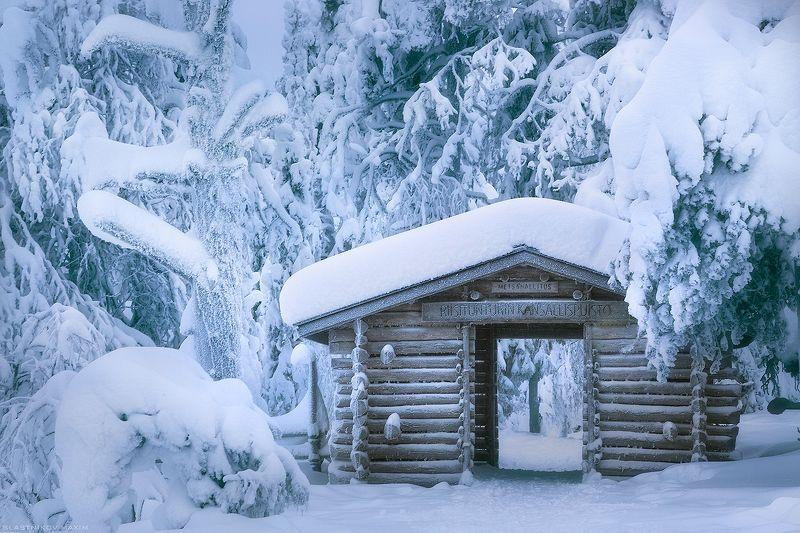 финляндия, снег, дерево, дом, тропинка, сугробы, мороз, холод, лес, путешествие, парк, travel, explore, snow, frost, trees, forest, travel, trekking, day, winter Winter\'s Talephoto preview