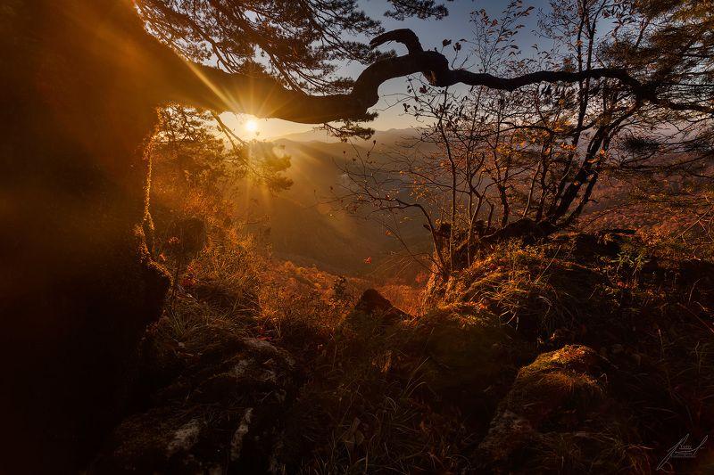 Утро нового дня.photo preview