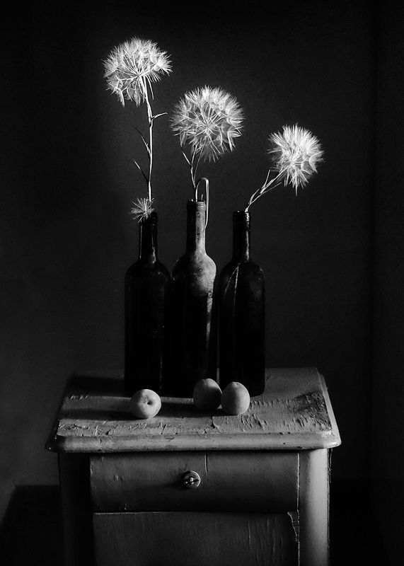 stilllife,blackandwhite,dandelions, Threephoto preview