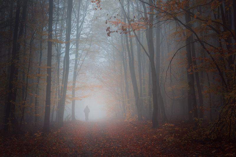 Milan Samochin-Photographyphoto preview