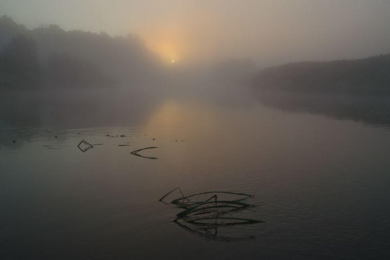 пейзаж, природа, река, упа, якшино, утро, рассвет Широка рекаphoto preview