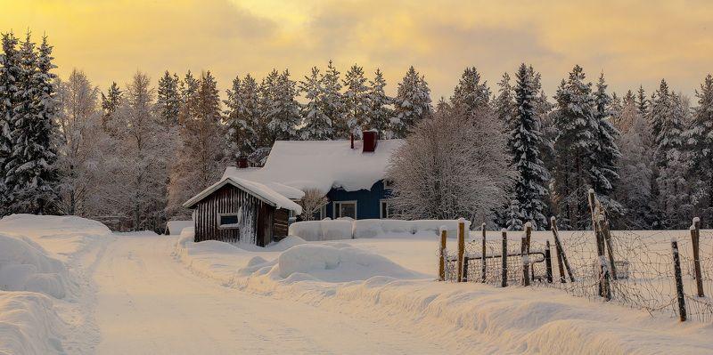 зима, снег, вечер, хутор, дом, закат, лес, дорога. Зимний вечерphoto preview