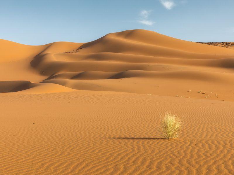 пустыня, алжир, тадрарт, сахара, дюны, песок Пустыняphoto preview