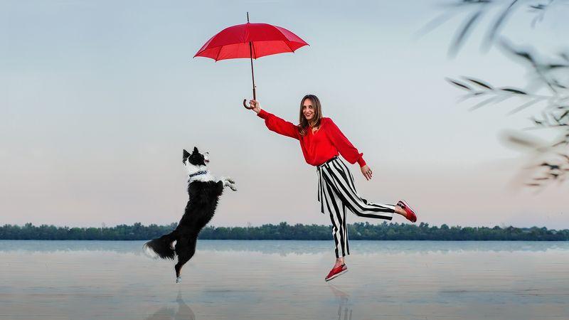 собака, человек, река Dreamsphoto preview