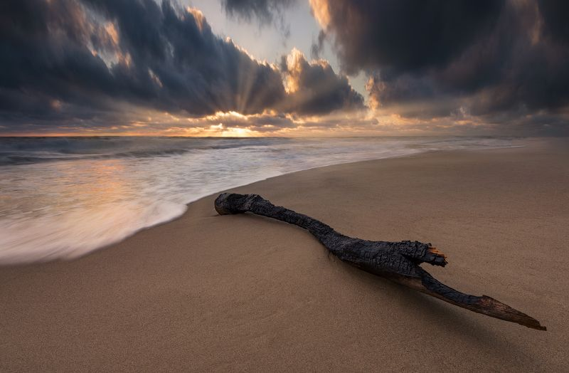 Sun Raysphoto preview