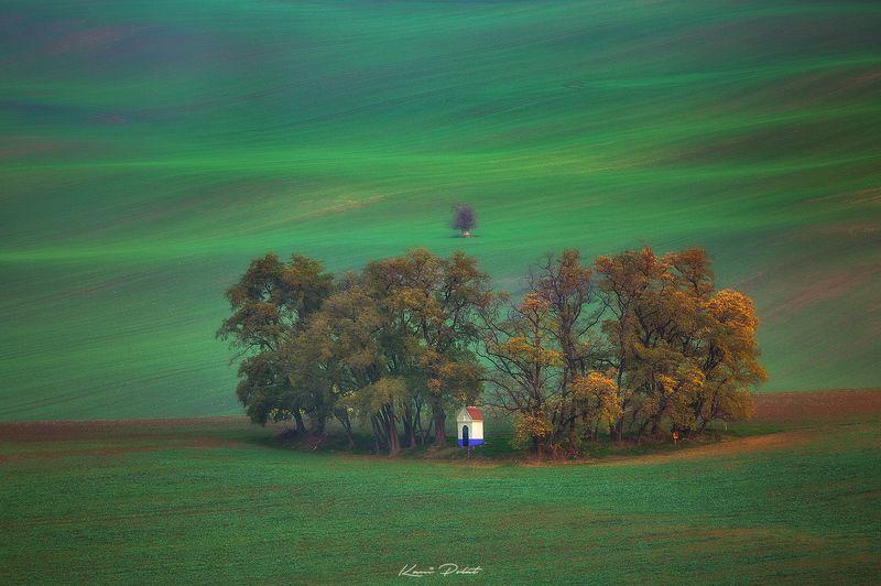 Santa barbara\'s autumnal decorationphoto preview