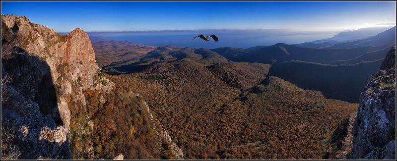 крым, осень, демирджи, панорама Облетая свои владенияphoto preview