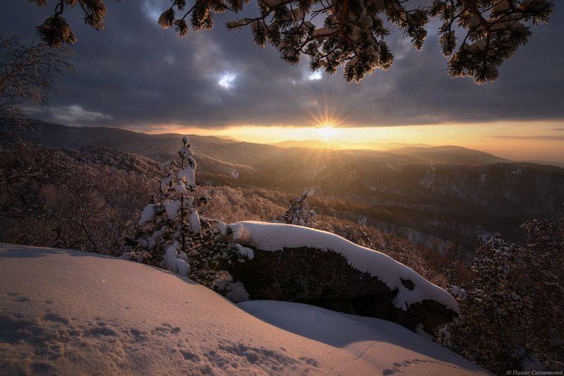 Пейзаж, Алтай, осень, зима, снег, закат, солнце, тайга, горы, свет, лучи Ноябрьphoto preview