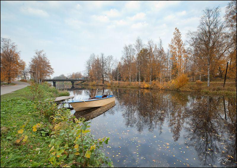 ленинградская область Осеннее разноцветьеphoto preview