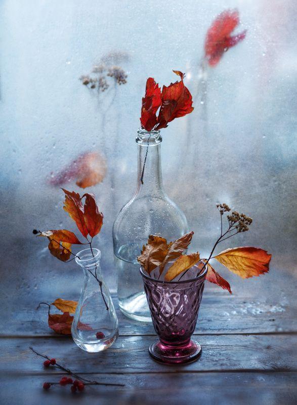 полиэтилен, осень, капли, бутылка Последние капли осениphoto preview