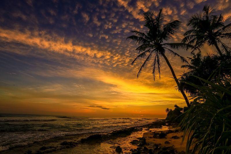 ланка, море, закат, цейлон Шри Ланкаphoto preview