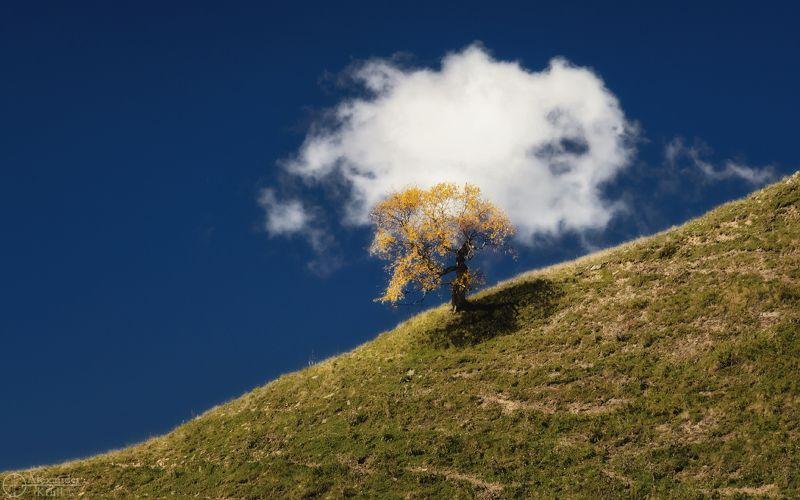 Два слова про осень...photo preview