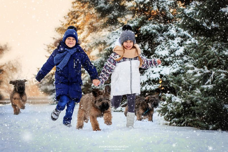 собака, анималистика, зима, дети, бриар, щенки Новые друзьяphoto preview