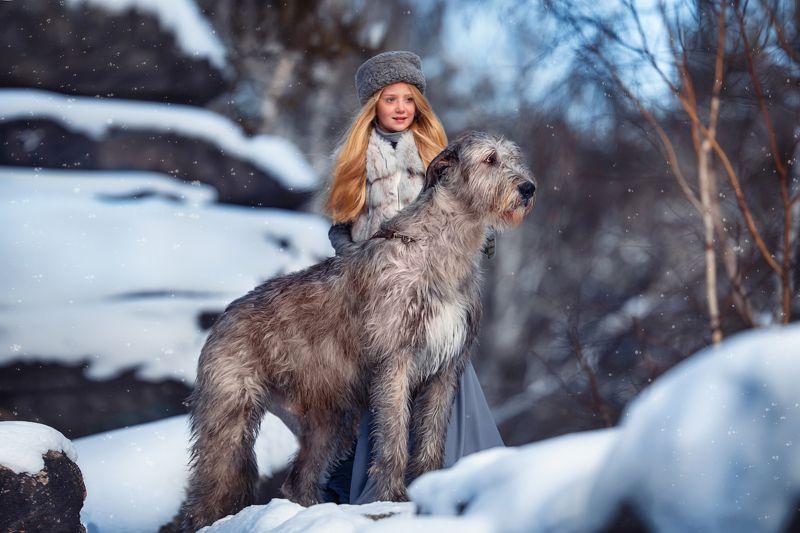 Собака, волкодав, девушка, портрет Зимаphoto preview