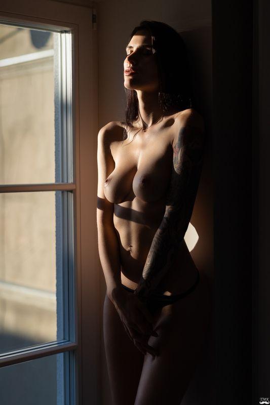 woman, portrait, sensual, people, beauty, erotic, light, window, sunlight, brunette, nikon, topless, nude, nudeart, indoor Shephoto preview