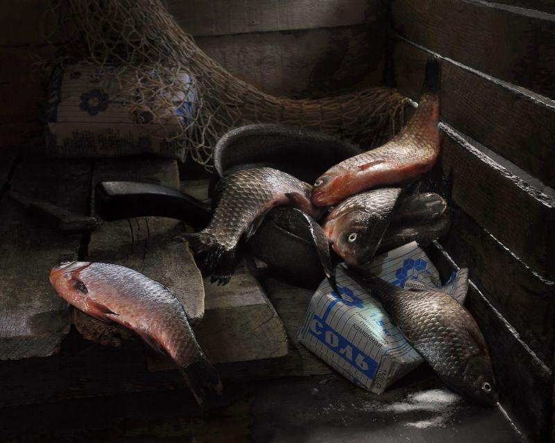 карась рыба рыбак натюрморт В каморке рыбака.photo preview