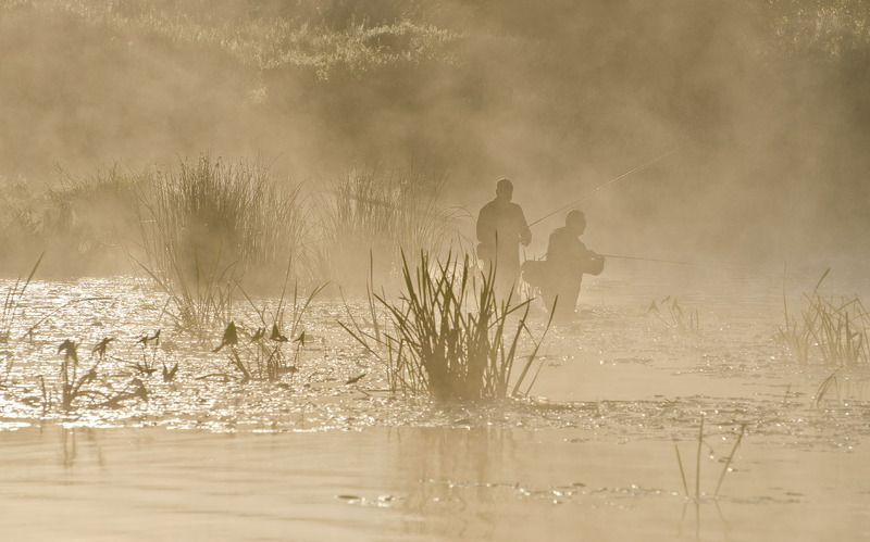 рыбаки, рыбалка, река, упа, якшино, лето, утро Кто рано встаёт...photo preview