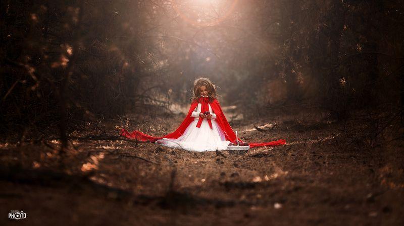 лес, ребенок, яблоко, свет, красный photo preview