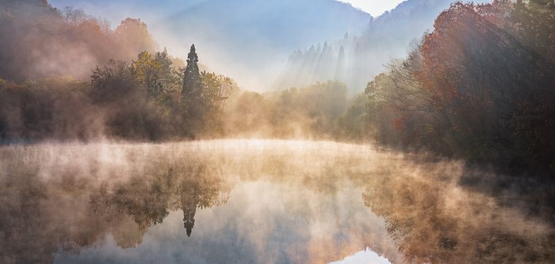 reflection, foliage, Autumn, foggy, morning Autumn light of Selyangjiphoto preview