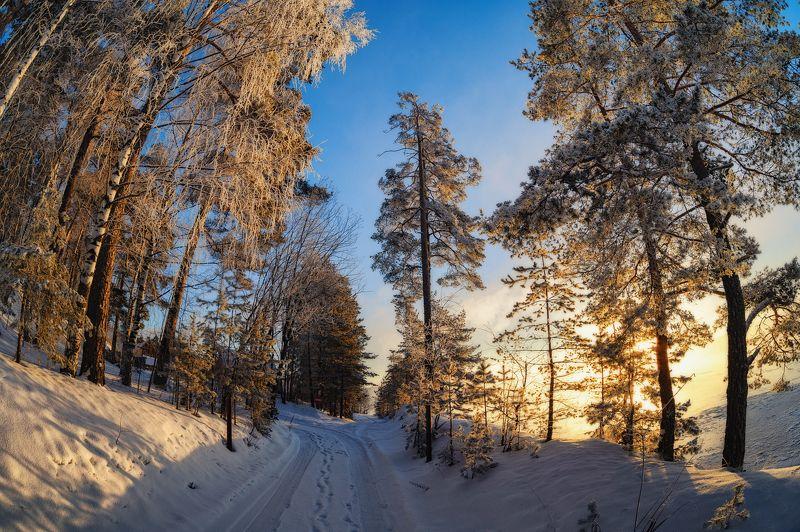 утро  дорога  зима  утро  мороз  деревья  прогулка Морозная прогулкаphoto preview