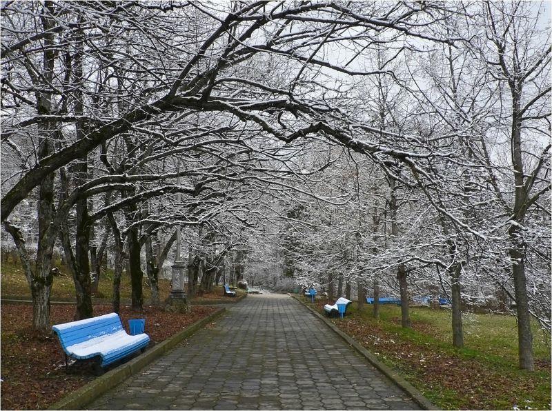 железноводск, парк, зима Зимний паркphoto preview
