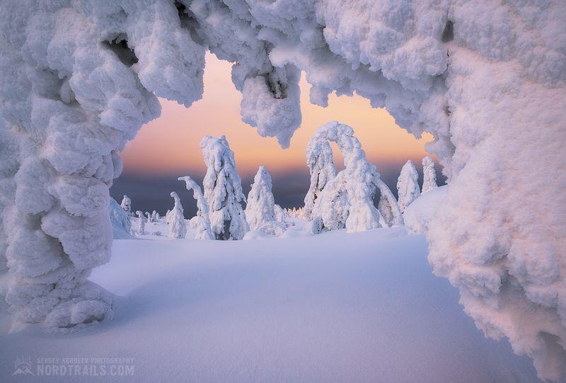 Зимняя сказка на Кандалакшских горкахphoto preview
