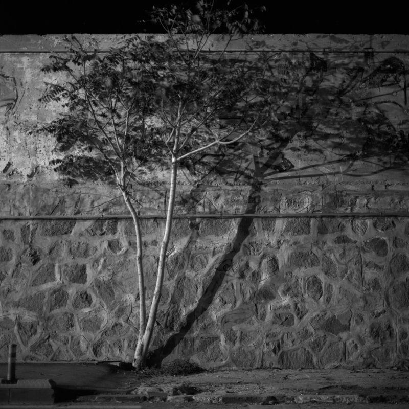 contrat, night, shadows, wall Shadesphoto preview