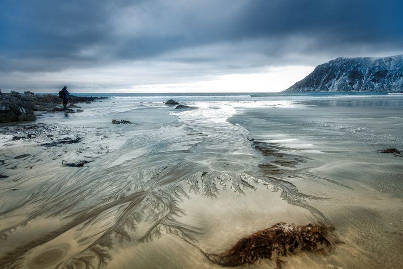 lofoten, winter, landsvape At the beachphoto preview