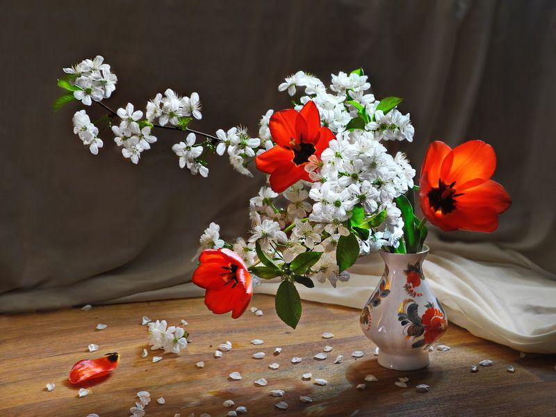 цветы тюльпаны весна цветение букет Ягодки ещё впереди.photo preview