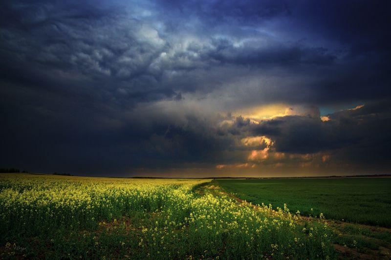 Беларусь Ни спрятаться, ни скрытьсяphoto preview