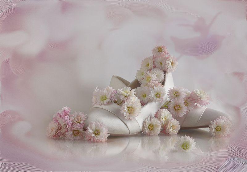 натюрморт хризантемы туфли розовый осень  Незнакомка с хризантемамиphoto preview