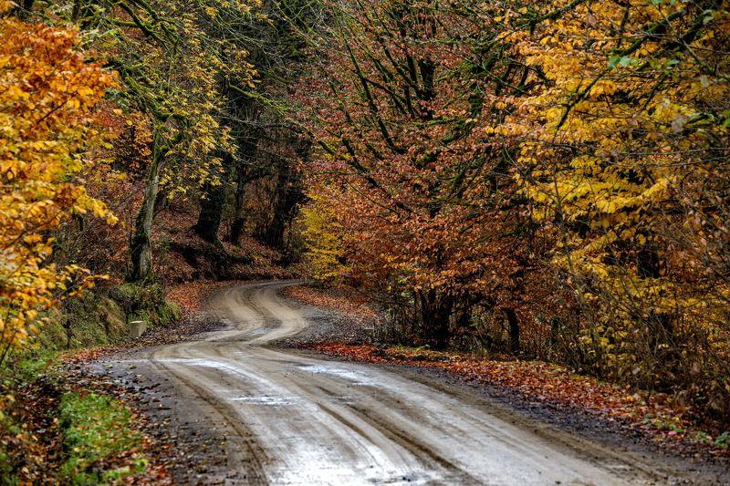 азербайджан ленкорань село осень пейзаж природа Горная дорога в осень - зимой : Ленкоранский районphoto preview