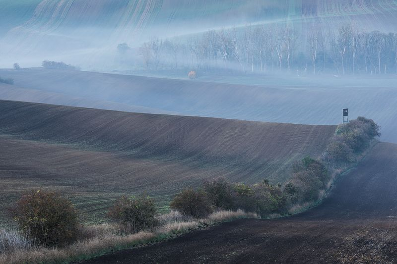 моравия, осень, поля, туман Пробуждениеphoto preview