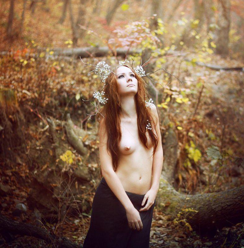 осень ...photo preview