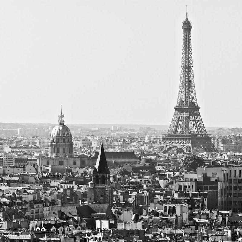 paris, france Parisphoto preview