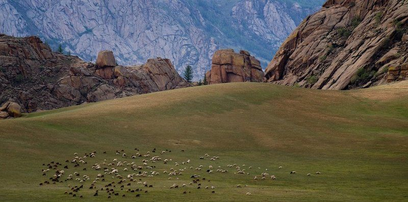 монголия, горхи-терелж  gorkhi-terelj national park, mongolia. Монголия.Горхи-Терелж.photo preview