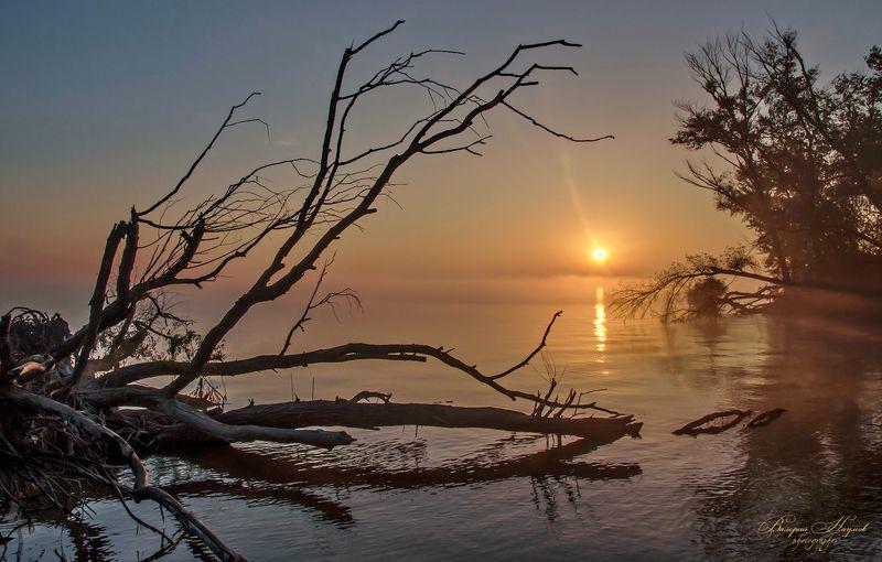 утро, рассвет, река, восход, осень На рассветеphoto preview