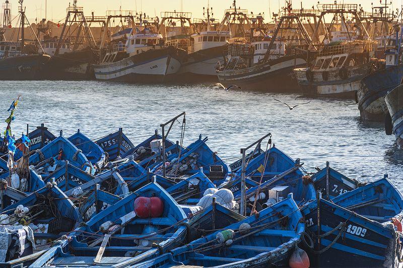 марокко, порт, лодка, эссуэйра, атлантика, рыбак, африка, могадор Противостояниеphoto preview