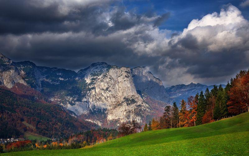природа лес деревья осень листва утро трава путешествия пейзаж австрия скалы горы небо облака Австрийские зарисовкиphoto preview