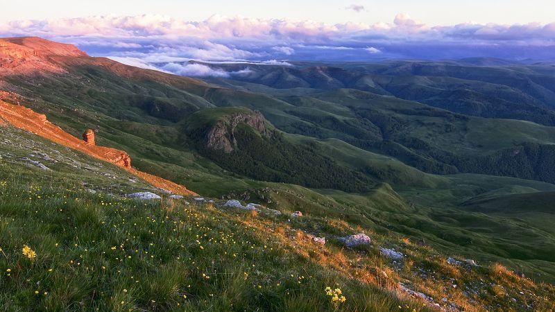 кавказ,горы,плато,цветы,закат. Высокогорные ландшафты Бермамыта.photo preview
